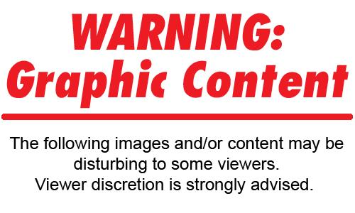 Graphic Pic Warning.bmp